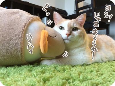 6_2017_0910.jpg